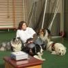 Érzékenyítő program – vakvezető kutyák bemutatása